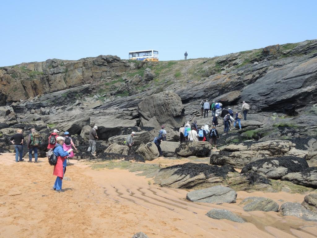 AVG. 2013.05.25. L'Île d'Yeu - Les AVGistes déambulent dans les paragneiss de la plage des Sables Rouis