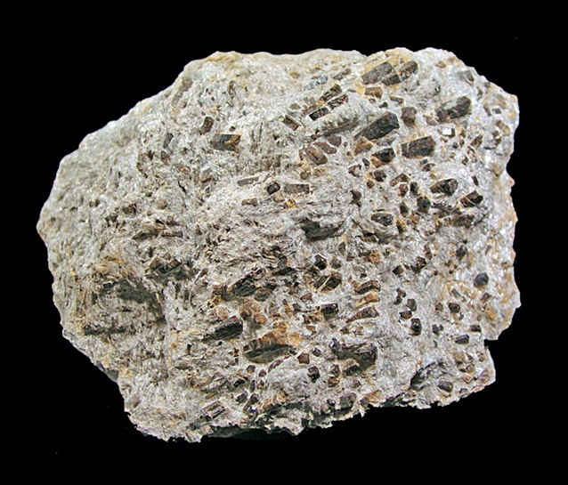 Tourmaline - nombreux cristaux dans du micaschiste