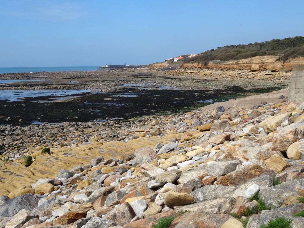 L'Anse de La République entre Le Veillon et Port-Bourgenay En jaune au premier plan, affleurement de calcaire Nankin d'âge Hettangien