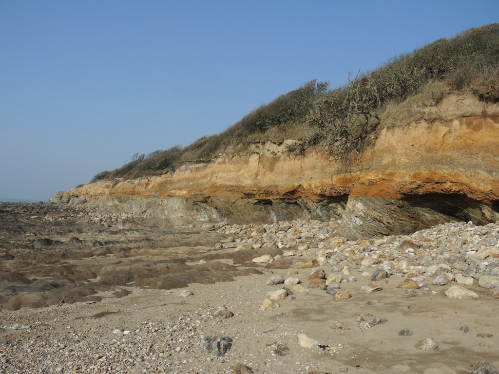 Discordance du Jurassique sur le socle paléozoïque - Noter la direction et le pendage des schistes à grenat du socle au niveau de l'estran.