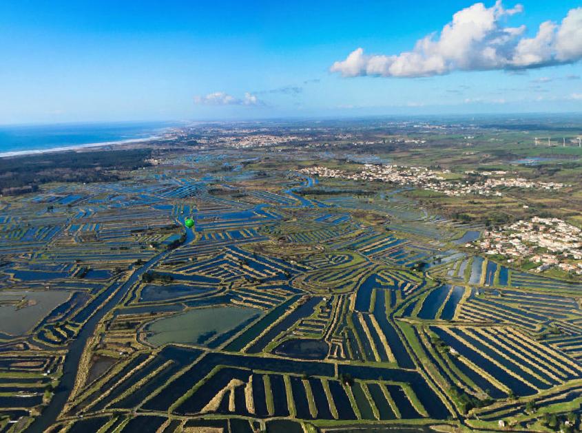 Vue aérienne sur les marais de l'Île d'Olonne