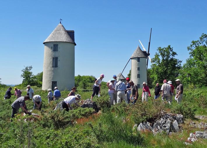 AVG. 2014.05. Synclinorium de Chantonnay - Affleurement de quartzite de la Butte des Moulins à Mouilleron-en-Pareds