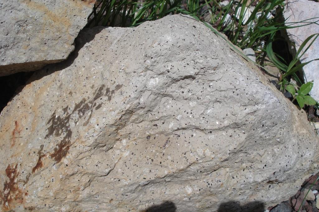 Trachyte à amphibole du Cratère Killian (63)