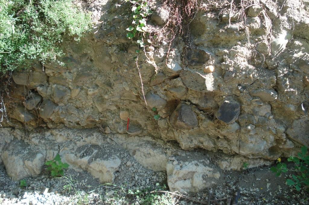 Conglomérat oligocène de Limagne (63 - Le Perrier)