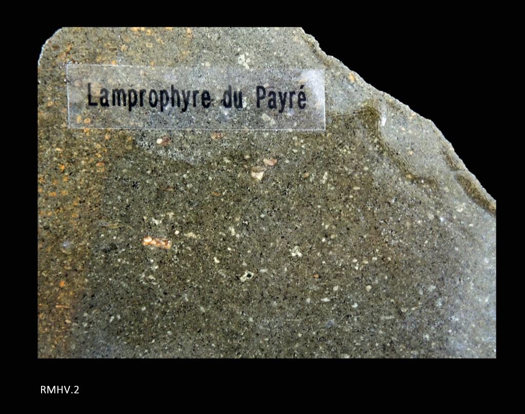 Lamprophyre - Lias inférieur - (85 - Pointe du Payré)