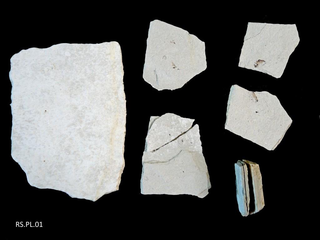 Diatomites - Miocène supérieur - (15 - Foufouilloux)