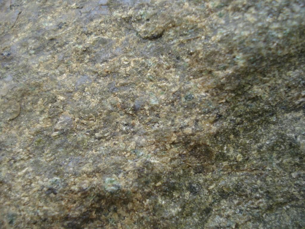 Bloc de lherzolite - Détail - Étang de Lherz (09 - Le Port)