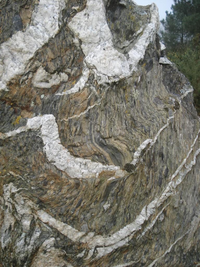 Alternance de bancs de quartzite et de schiste - Détail - (35 - Lande de Cojoux - Saint-Just)