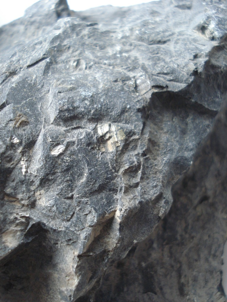 Péridotite serpentinisée du Chenaillet (05 - Montgenèvre)