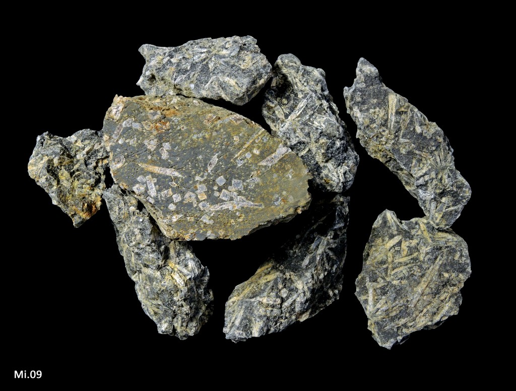 Andalousite (variété chiastolite) en porphyroblastes dans des schistes alumineux