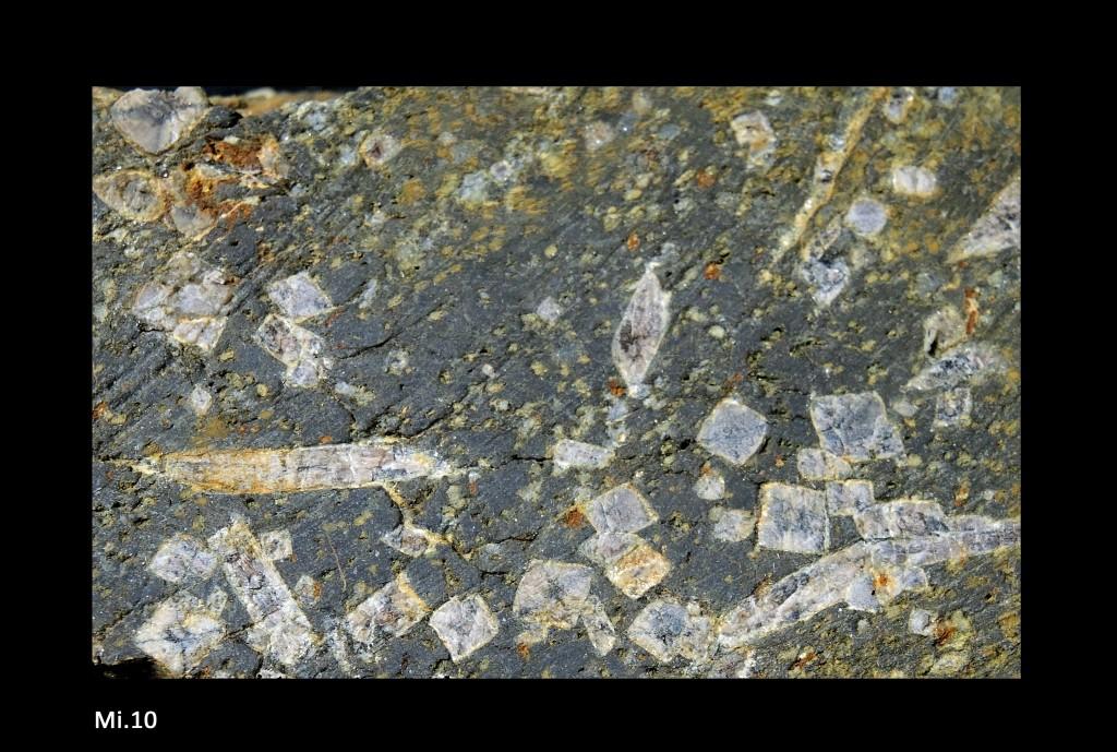 Andalousite (variété chiastolite) en porphyroblastes développés dans des schistes alumineux - Détail