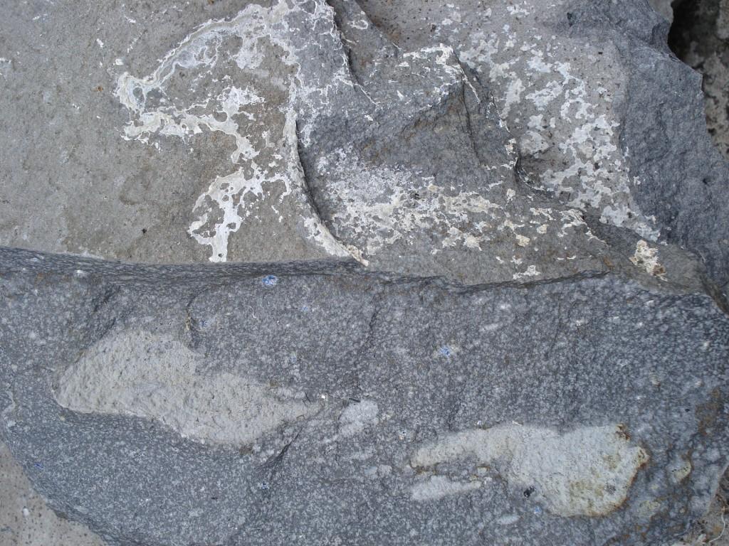 Téphrite à haüyne - Rocher de Chastel-sur-Murat (15 - Cantal)