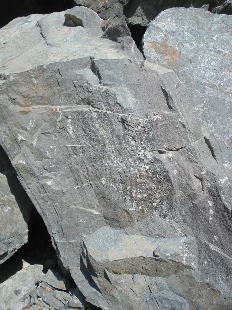 Recristallisation dans une fissure au sein de l'éclogite (85 - Saint-Philbert-de-Bouaine)