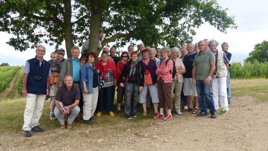 AVG. 2015.07.07. Sortie Synclinorium de Saint-Georges-sur-Loire - Vignes de la Roche aux Moines