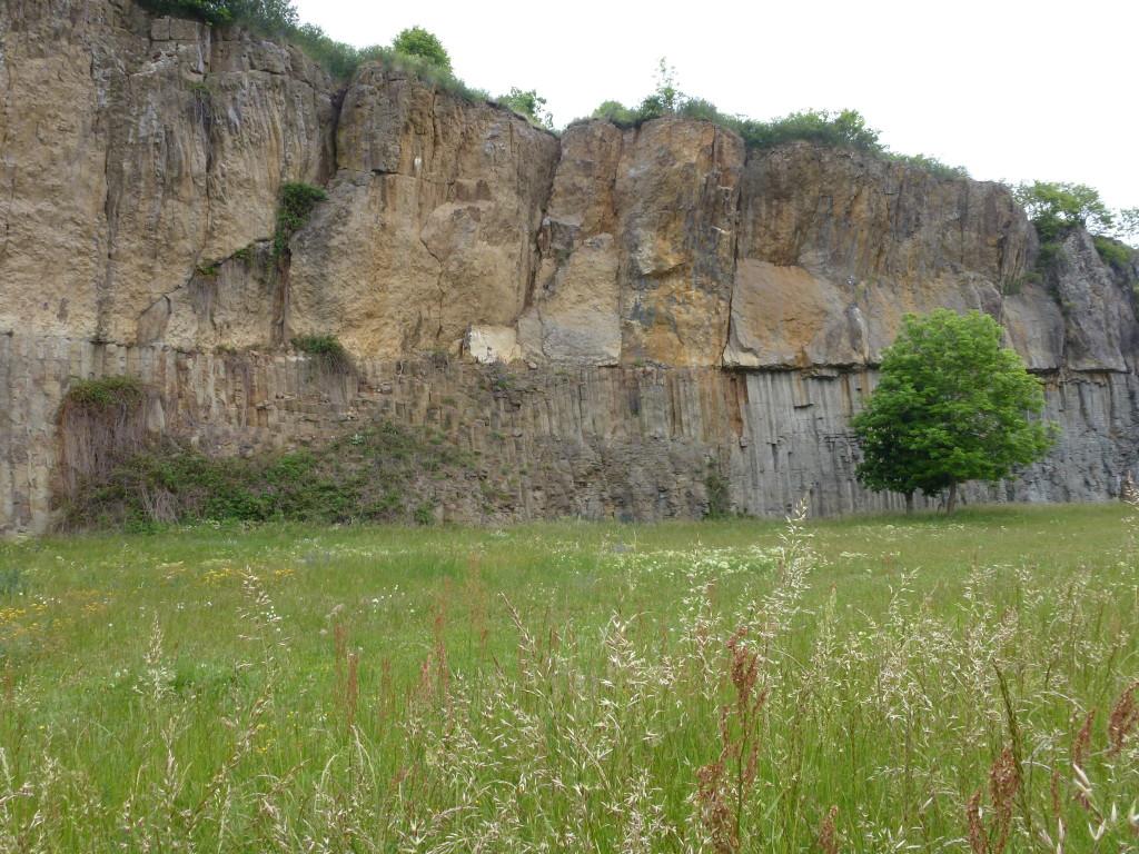 AVG. 2015.06.26. Sortie Cantal - Les orgues basaltiques de Saint-Flour