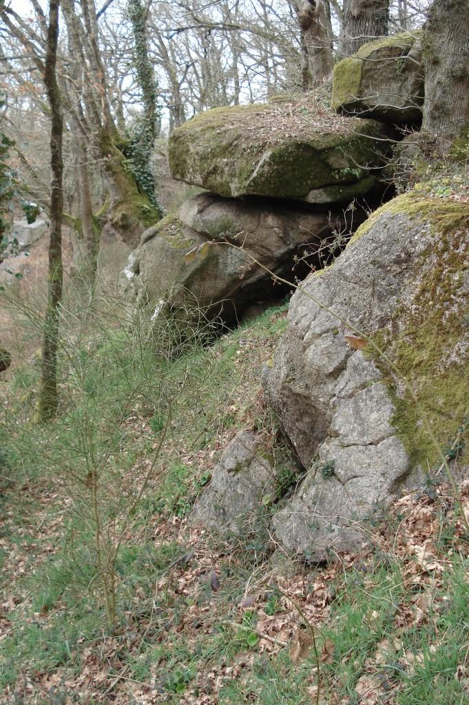 Même filon d'aplite plissé au premier plan (85 - Saint-Laurent-sur-Sèvre)