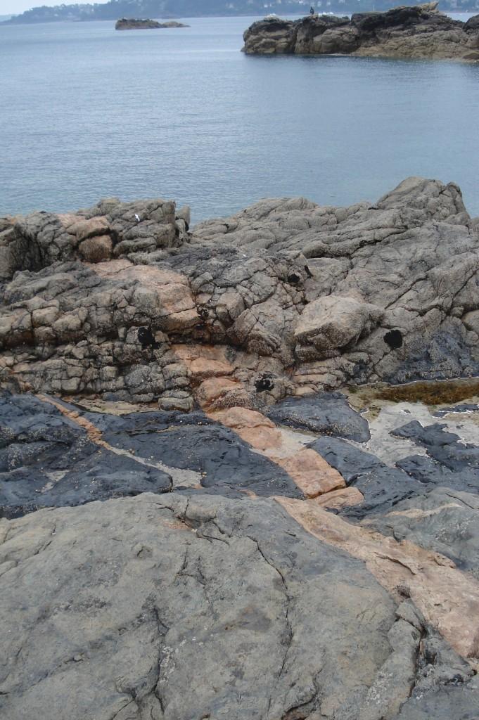 Filon de granite rose de Pors Rolland et filon de dolérite sombre - Le Ranollien (22 - Perros-Guirec)