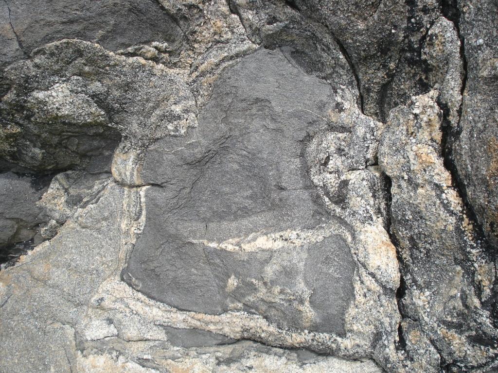 AVG. 2014.09.06. Pays de Léon - Porz Grac'h - Boules de diorite englobées dans un ciment de granite migmatitique - Détail